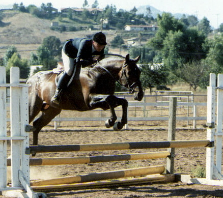 Firedancer's second oxer jump